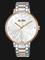 Alba AH8542X1 Ladies Silver Dial Dual Tone Stainless Steel Strap Thumbnail