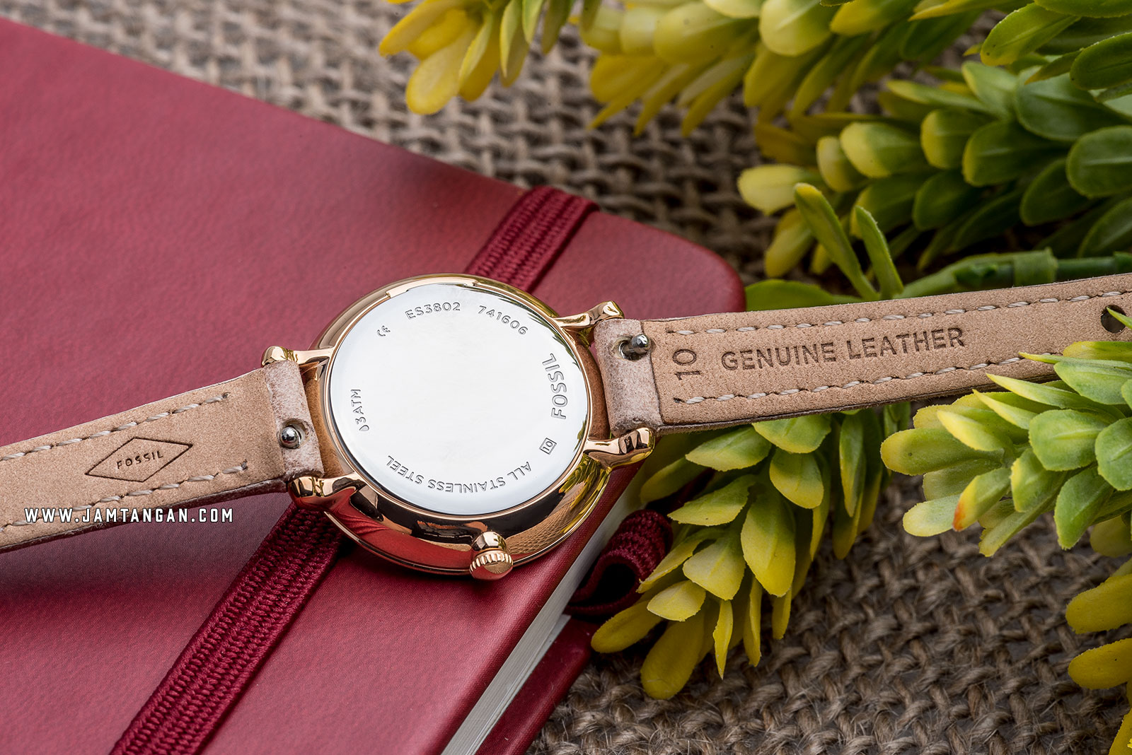 Fossil ES3802 Jacqueline Mini Sand Leather Watch Machtwatch