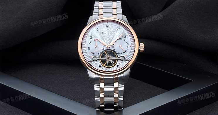 Seagull 217.414 Automatic Mechanical Day Date Flyweel Two-Tone Stainless Steel Machtwatch